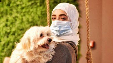 Photo of سعودی عرب میں کتوں کیلئے کیفے بھی کھل گیا
