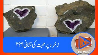 Photo of زمُرد کے پتھر پر 'محبت بھرا دِل' برآمد۔۔۔
