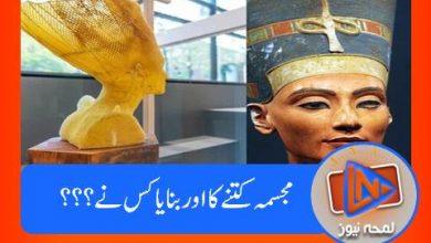 Photo of مصری ملکہ کا یہ مجسمہ ، کونسی مکھیوں نے بنایا؟؟؟