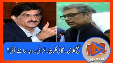 Photo of وزیراعلیٰ سندھ مراد علی شاہ اور وفاقی وزیرعلی زیدی میں لڑائی ۔۔۔ دونوں نے کسے شکایت لگائی؟؟؟