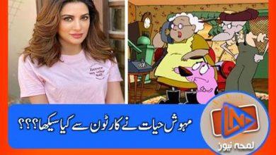 Photo of اداکارہ مہوش حیات نے کارٹون کریج دی کاورڈلی ڈوگ سے کیا سیکھا؟؟؟