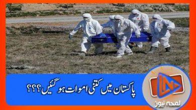Photo of پاکستان میں کرونا وائرس سے متاثر کتنے لوگ؟؟؟