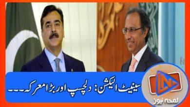 Photo of سینیٹ انتخابات میں حکومت اور اپوزیشن کے پاس کتنی نشستیں موجود؟؟؟