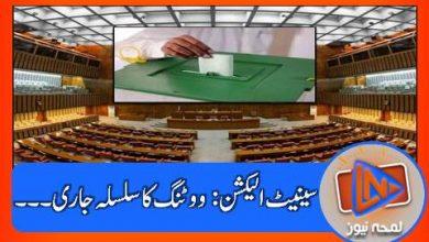 Photo of سینیٹ انتخابات: کتنی نشستوں پر پولنگ جاری؟؟؟ پہلا ووٹ کس نے کاسٹ کیا ؟؟؟
