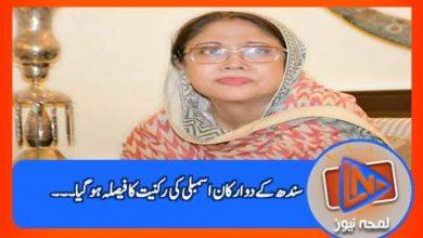 Photo of سندھ ہائیکورٹ نے فریال تالپور اور گیانچند ایسرانی کی اسمبلی رکنیت سے متعلق فیصلہ سنا دیا ۔