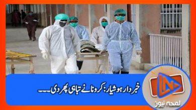 Photo of کرونا کی تیسری لہر کا قہر جاری، مہلک وائرس مزید 102 زندگیاں ہڑپ کرگیا