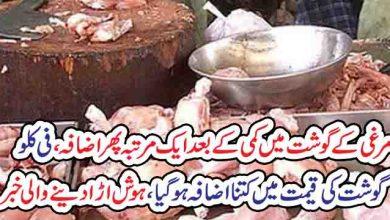Photo of مرغی کے گوشت میں کمی کے بعدایک مرتبہ پھراضافہ ،فی کلوگوشت کی قیمت میں کتنااضافہ ہوگیا،ہوش اڑ ادینے والی خبر