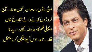 Photo of کوئی راتوں رات امیر نہیں ہوتا۔۔ آج کروڑوں کمانے والے شاہ رخ خان کو پہلی فلم کا معاوضہ کتنے روپے ملا تھا۔۔؟مداحوں کیلئے یقین کرنامشکل