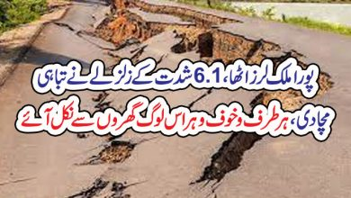 Photo of پورا ملک لرز اٹھا، 6.1شدت کے زلزلے نے تباہی مچادی، ہر طرف وخوف و ہراس  لوگ گھروں سے نکل آئے