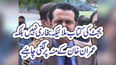 Photo of بجٹ کی کتاب ملیکہ بخاری نہیں بلکہ عمران خان کے منہ پر لگنی چاہئیے