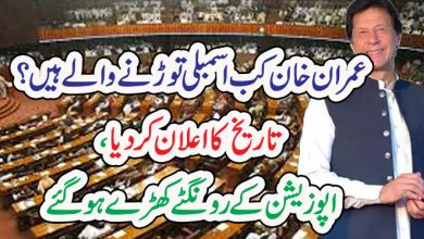 Photo of عمران خان کب اسمبلی توڑنے والے ہیں؟  تاریخ کا اعلان کر دیا ، اپوزیشن کےرونگٹے کھڑے ہو گئے