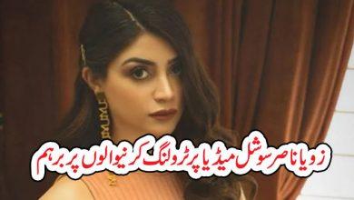 Photo of زویا ناصر سوشل میڈیا پر ٹرولنگ کرنیوالوں پر برہم