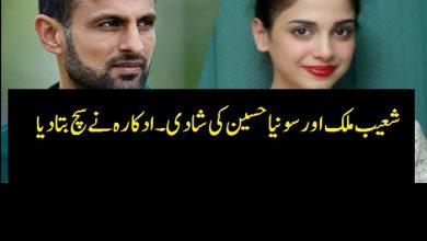 Photo of شعیب ملک اور سونیا حسین کی شادی۔ ادکارہ  نے وضاحت کردی