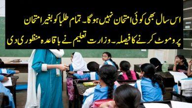 Photo of اس سال بھی کوئی امتحان نہیں ہوگا۔۔تمام طلبا کو بغیر امتحان پروموٹ کرنے کا فیصلہ۔۔ وزارت تعلیم نے باقاعدہ منظوری دی