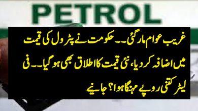 Photo of حکومت نے پٹرول کی قیمت میں اضافہ کردیا ،نئی قیمت کا اطلاق بھی ہو گیا۔۔ فی لیٹر کتنی روپے مہنگا ہوا ؟جانیے