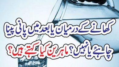Photo of کھانے کے درمیان یا بعد میں پانی پینا چاہئے یا نہیں؟ماہرین کیا کہتے ہیں؟