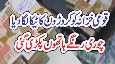 Photo of قومی خزانہ کو کروڑوں کا ٹیکا لگا دیا،چوری رنگے ہاتھوں پکڑ ی گئی