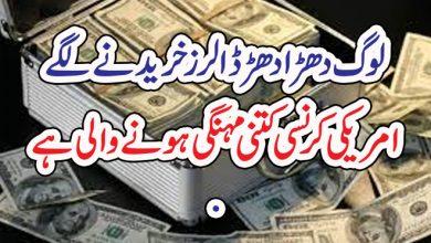 Photo of لوگ دھڑا دھڑ ڈالرز خریدنے لگے، امریکی کرنسی کتنی مہنگی ہونے والی ہے
