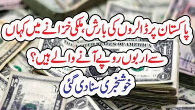 Photo of پاکستان پر ڈالروںکی بارش،ملکی خزانے میں کہاں سے اربوں روپے آنے والے ہیں؟خوشخبری سنا دی گئی